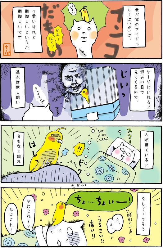WEB漫画フリーランスかぴぐらしアイドルちーぽ11