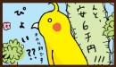 オカメインコ・ちーぽちゃんのお食事担当。沢山食べさせることが幸せだと思ってます。